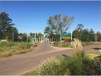 https://www.gallito.com.uy/excelente-ubicacion-450-mts-inmuebles-17161346