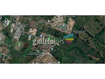 https://www.gallito.com.uy/terreno-en-venta-inmuebles-17402063
