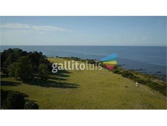 https://www.gallito.com.uy/quinta-en-venta-inmuebles-17360067