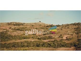 https://www.gallito.com.uy/exclusivo-club-de-campo-inmuebles-17346671