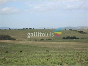 https://www.gallito.com.uy/campo-por-ruta-12-inmuebles-17346262