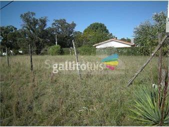 https://www.gallito.com.uy/gran-lugar-para-locales-o-edificar-varias-ph-inmuebles-12817757