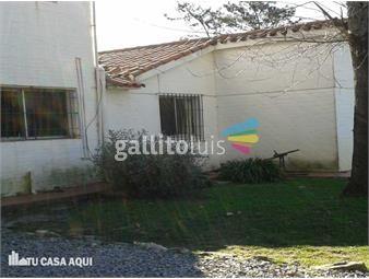 https://www.gallito.com.uy/amplia-casa-inmuebles-13372611