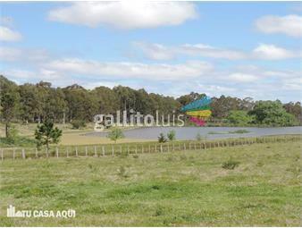 https://www.gallito.com.uy/excelente-campo-para-ganaderia-agricultura-o-haras-inmuebles-12895824